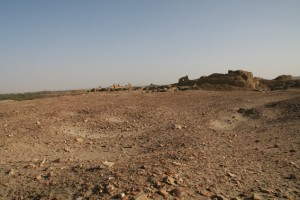 Overview of the as yet unexplored western part of the New Kingdom town, north of the Ottoman fortress.