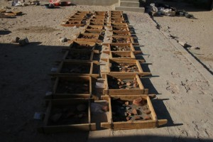 A selection of sherds gets washed for further processing.