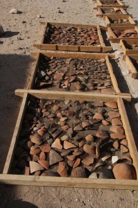 Hundreds of sherds from feature 15 have been washed already and are waiting to be processed.